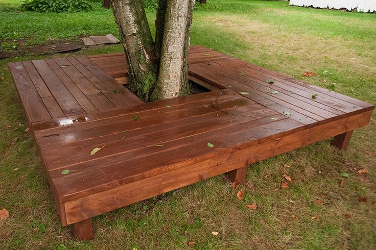 A close-up view of the awesome tree bench/deck mom and I built around the birch tree.