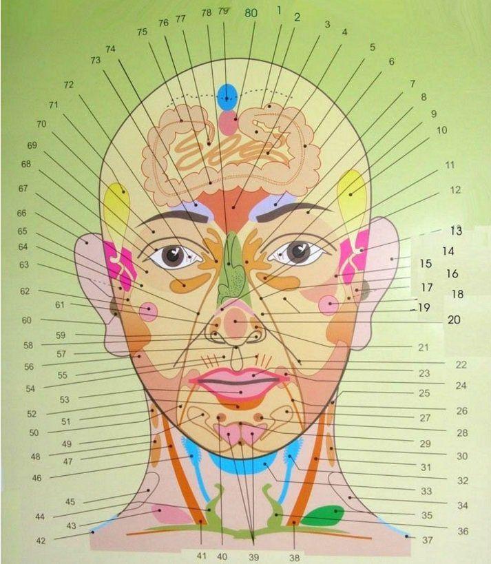 Geralmente, são os produtos vendidos em farmácia que têm a credibilidade das pessoas.No entanto, eles nem sempre são eficazes, além da maioria causar efeitos colaterais. Na verdade, a medicina natural tem provado ser bem mais eficiente para nossa saúde e bem-estar do que a tradicional.Por isso, a fitoterapia, acupuntura, yoga e muitas outras técnicas são