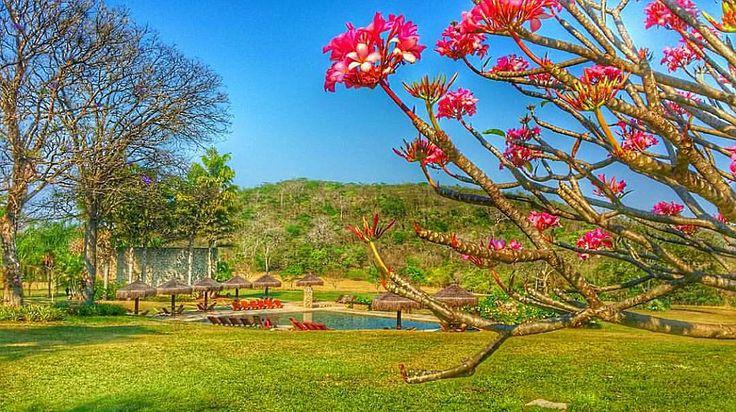 On instagram by bocadaoncaecotour #landscape #contratahotel (o) http://ift.tt/1QdsfXn Tarde Pessoal!  @pic.go #bocadaonça #bonitoms #cachoeira #rapel #bodoquena #adventures #bonito #naturelover #destination #paisajes  #ecoturismo #viajar #iger #igtravel #igersbrasil #trippy #travels #radical #escalada #fotografia #tourist #partiubrasil #cascades #férias #vibes #place #trilhas #waterfalls #brasil
