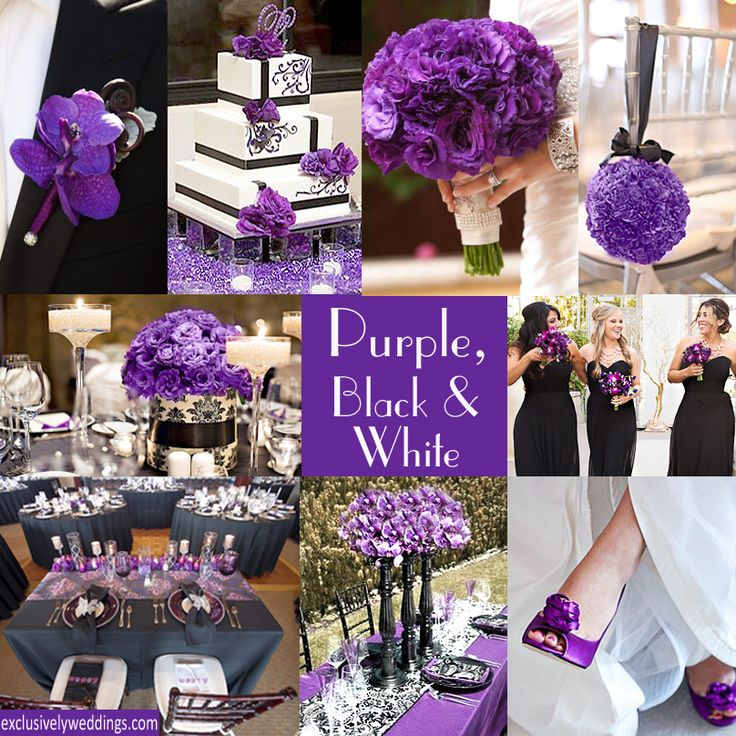 Purple with Black Wedding Colors..just add some silver and I think we've got it