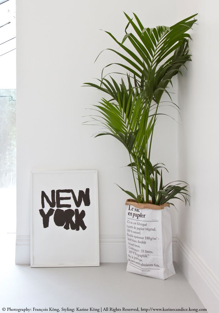 New-York print & paper bag from BODIE and FOU, urban jungle. For more inspiration >> www.karinecandicekong.com
