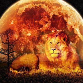 Новолуние в знаке Льва: что ожидает разные знаки Зодиака