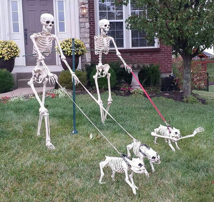 bob dorothy went to the pet store aka the pet cemetery to get their new dogs the trip home did not end well for bob