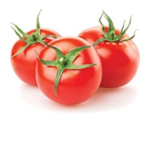 Buy Fresh Tomato (टमाटर) from Fresh Haat and get Free Home Delivery in Vasant Kunj  ORDER NOW +91-9818839007