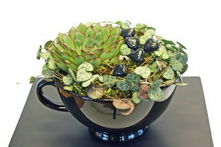 http://holmsundsblommor.blogspot.se/2010/11/tva-koppar-fran-lob-cappuccino-och.html Echeveria och hjärta på snöre i tekopp