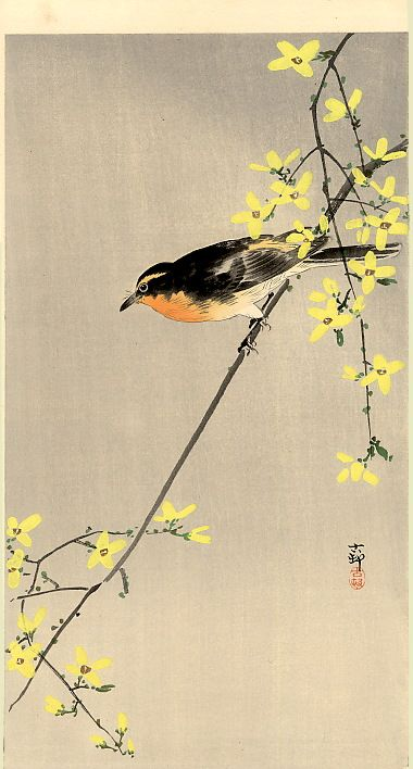Orange-Breasted Bird - Ohara Koson - woodblock print