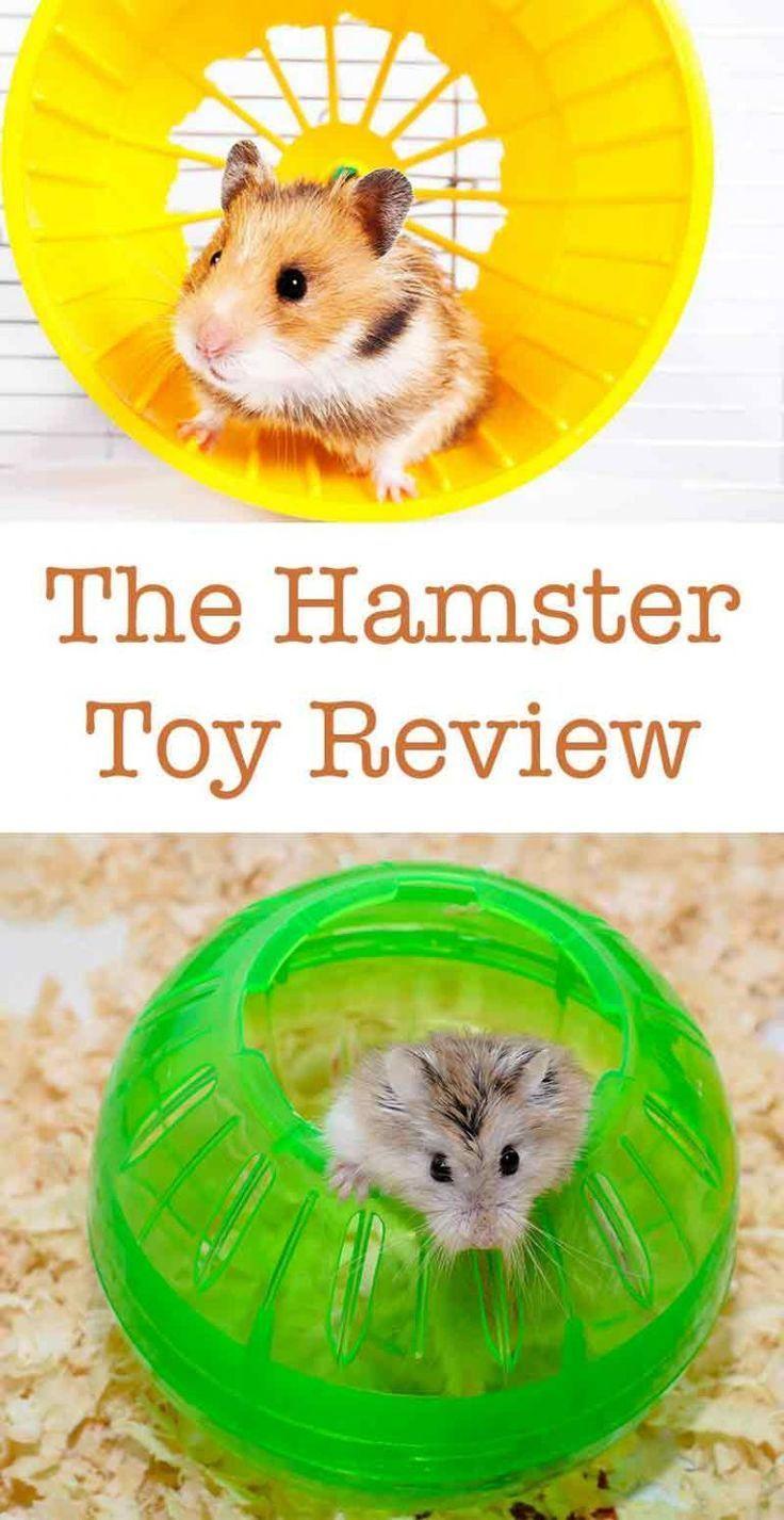 Cheap Hamster Cages Reptiles En 2020