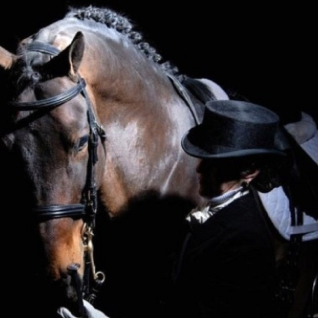 Dressage. For one to fly, one needs only to take the reins.   Reminds me of my mother and her horse 30 something years ago, good memories