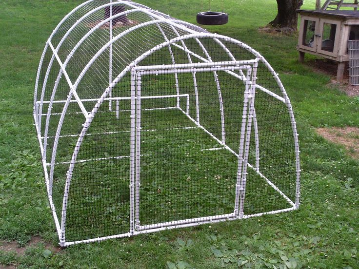 duck chicken movable grass pen ducks pinterest ducks