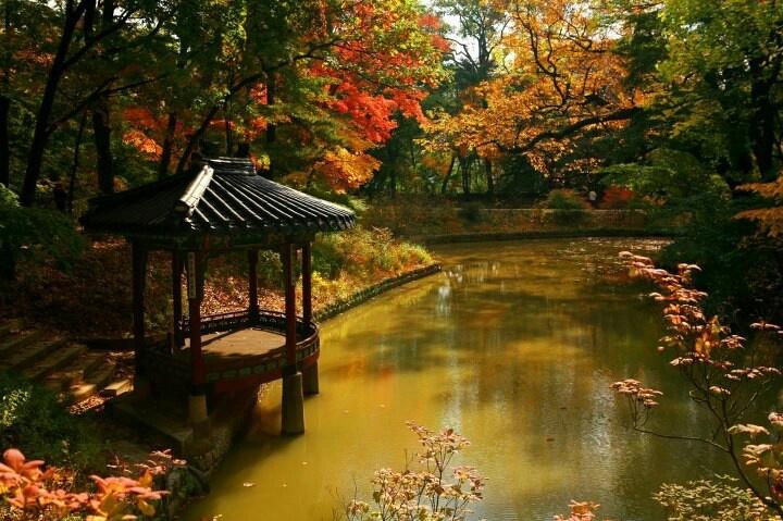 Korean garden in Changdeokgung #garden