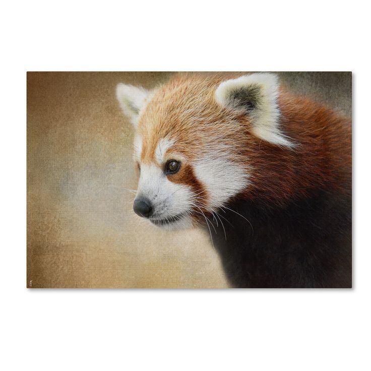 Jai Johnson ' Panda Watching' Canvas Art