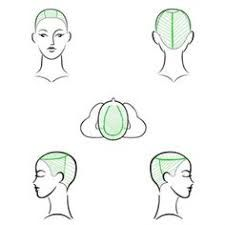 Resultado de imagen para hair sectioning pattern diagram for multi-colored streaks