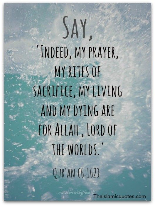 50 Best Islamic Quotes On Life With Images Islamic Quotes About