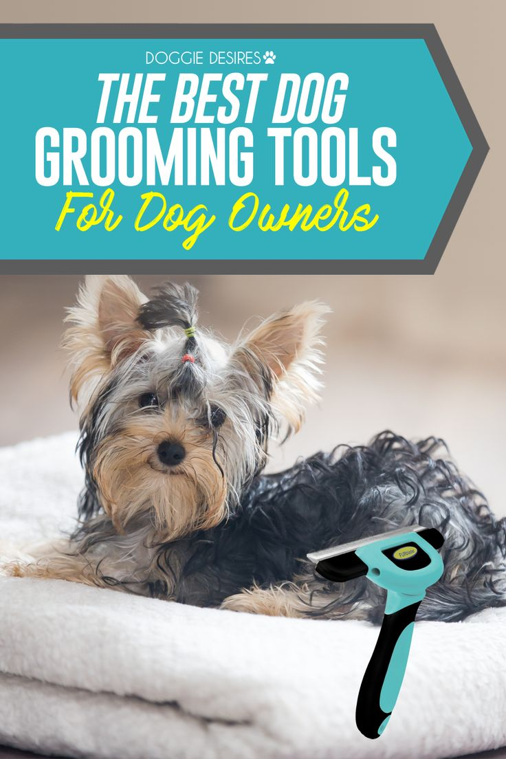 The best dog grooming tools for dog owners >> http://doggiedesires.com/best-dog-grooming-tools-dog-owners/