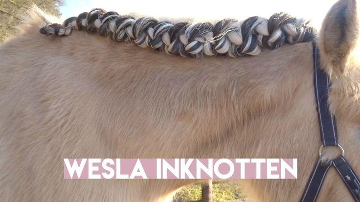 VLECHTEN // Paard met lange manen knotten! HOE?! [ Madee Fleur ]