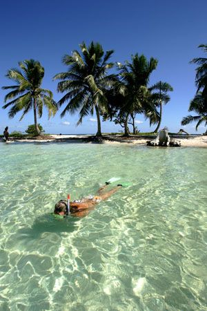 Snorkeling in the clear waters of Belize.  Go to www.YourTravelVideos.com or just click on photo for home videos and much more on sites like this.