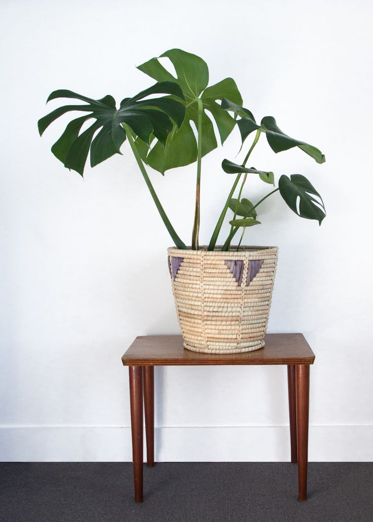 Hand made planter grass basket with unique purple decorative triangles.  Made in Zimbabwe, Africa for Woven Trail.   A delicious monster plant perfect for an indoor plant to add some nature to your living room.