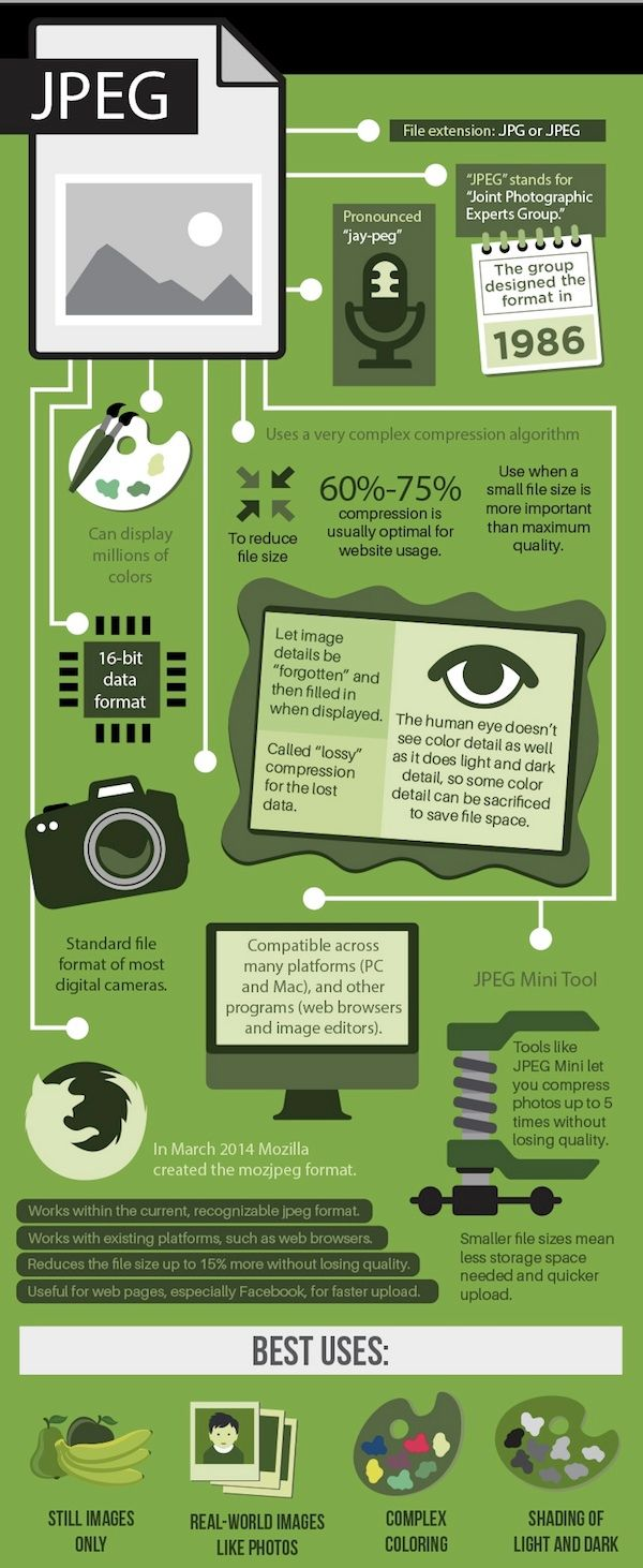 11 best infographic images on pinterest info graphics business science junkie when to use jpeg gif png oh tiffs are high quality and are much less lossy than other file types fandeluxe Choice Image