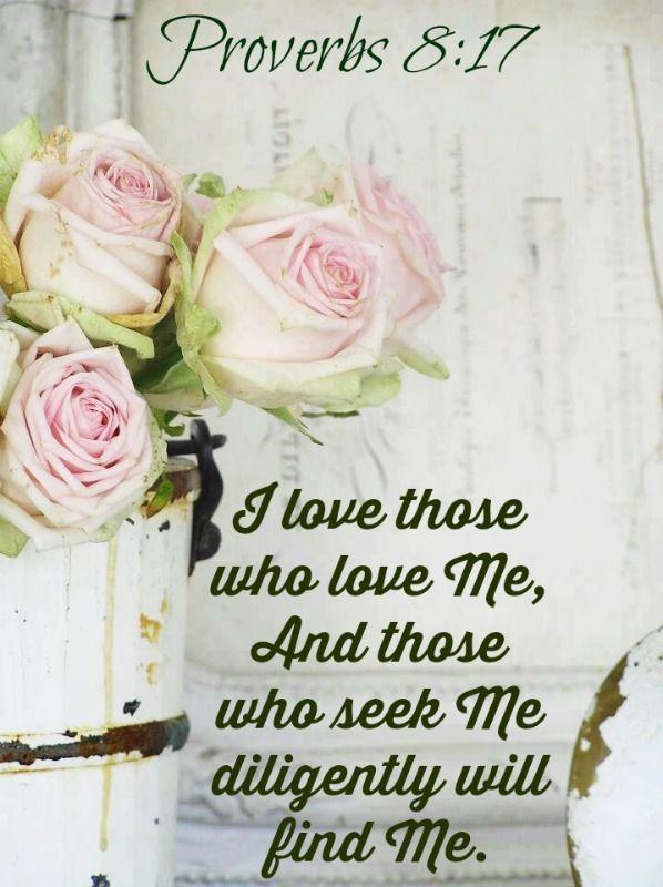 Proverbs 8:17 NKJV