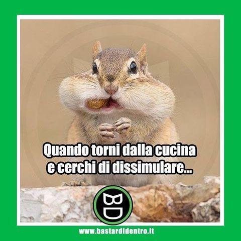 Dissimulare: lo stai facendo bene! #cucina #cibo Tagga i tuoi amici e #condividi #bastardidentro www.bastardidentro.it