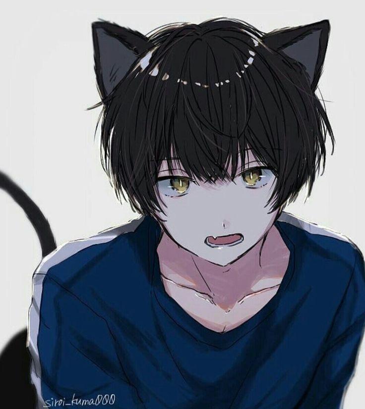 Pin by Harsh k on Neko Boys   Neko boy, Anime characters