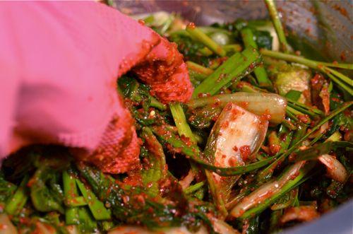 Spring Cabbage Kimchee
