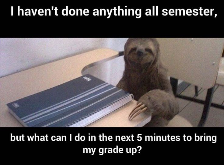 28 Pictures That Will Make Teachers Laugh Harder Than They Should