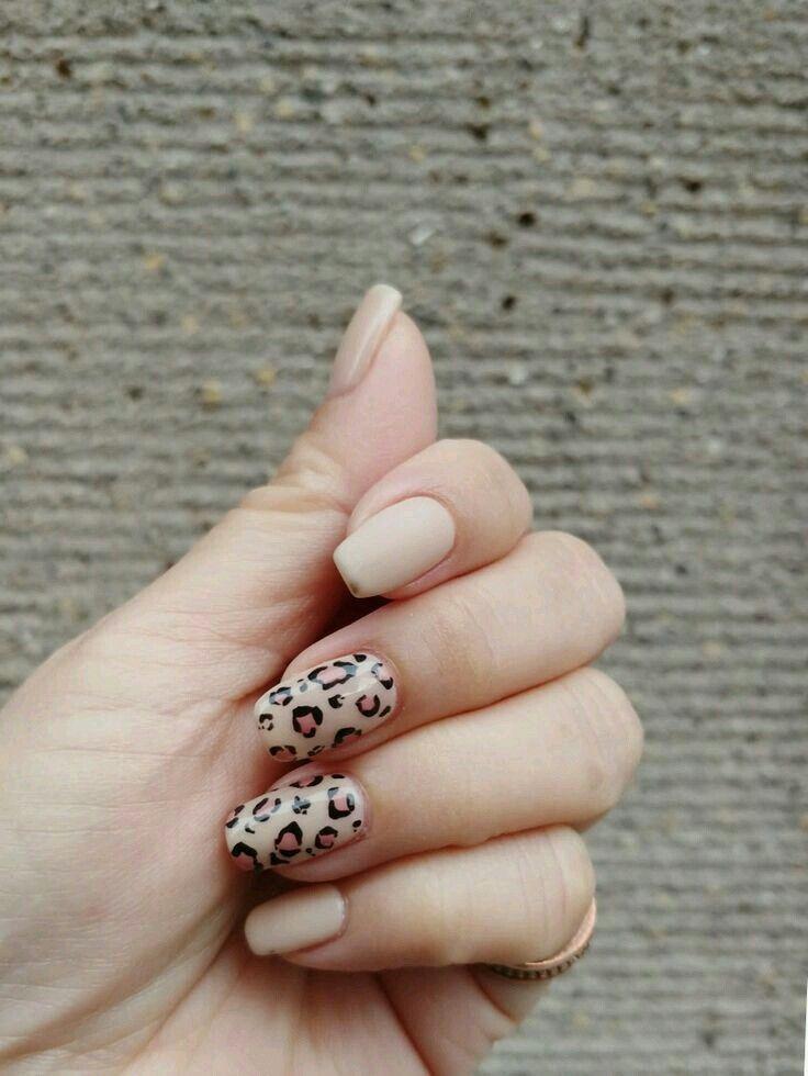 Pinterest Aalaaaatya Leopard Nails Dream Nails Leopard Nail Art Designs