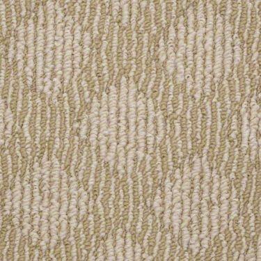 17 best images about flooring on pinterest shaw carpet for Best berber carpet brands