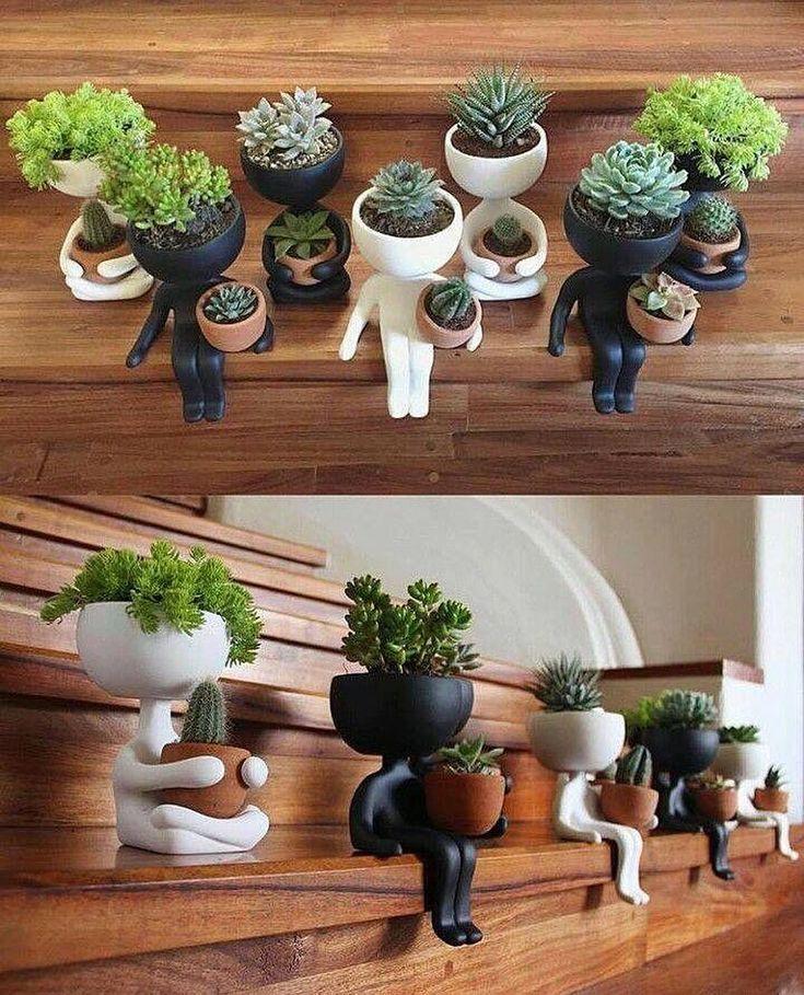 65 ideas for succulent pots planters Decoration Cactus, Decoration Plante, Succulents In Containers, Cacti And Succulents, Succulent Terrarium, Cactus Plants, Succulent Seeds, Air Plants, Indoor Plants