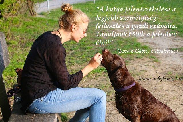 nők, kutya, fejlesztés, jelen, dogs, women, present