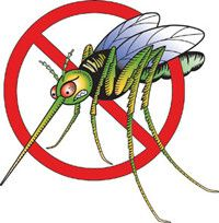 Mosquito by doubledanger, via Flickr: Idea, Yard, Repel Mosquitoes, Repel Mosquitos, Health