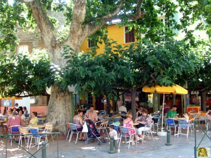 Thuir | De St Palais à Ste Maxime