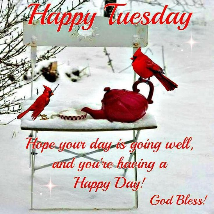 Happy Tuesday Hope Your Day Is Going Well good morning good morning quotes inspirational good morning quotes cute good morning quotes thankful good morning quotes