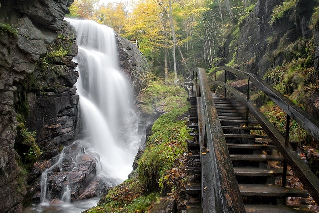 ...to Avalanche Falls which crowns the very lush Flume Gorge in Franconia Notch, New Hampshire.