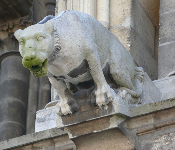 the gargoyle essay By nora heyser   gargoyle@flagleredu when people pass by the scene of a car accident, there are a few moments of time.