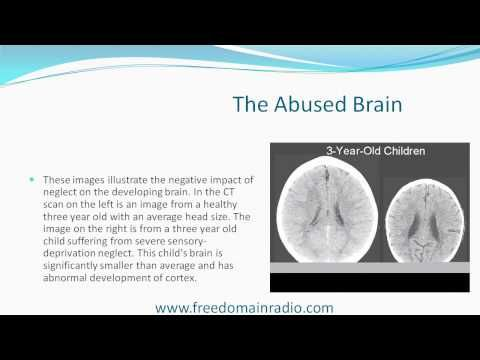 Bomb in the Brain - Death of Reason - Effects of Childhood Abuse    The ACE Study - (Adverse Childhood Experiences)