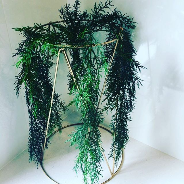 This one is for all you greenery fans!! 🌿🍃🌱 Tall gold centerpieces with greenery only $10 each to Hire