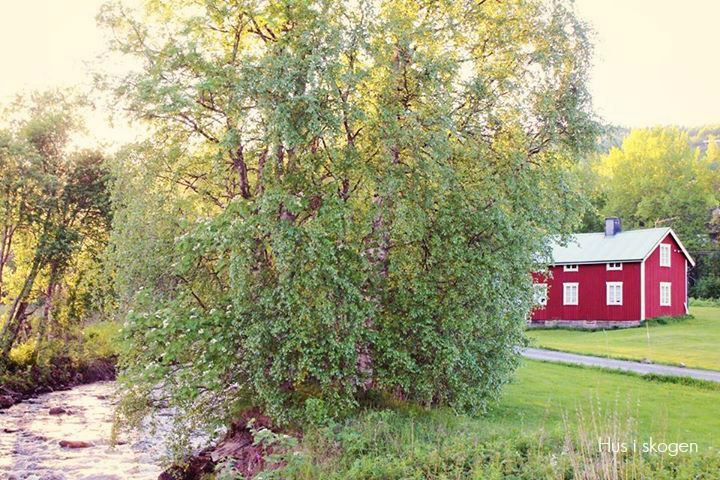 Sweden ♡ Åre ♡ Röd stuga ♡ Red little house ♡