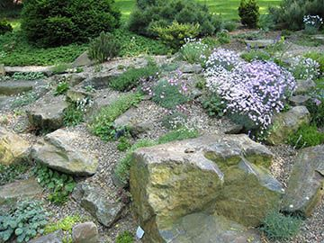 small scree for special alpines for one of my rock garden designs in new jersey