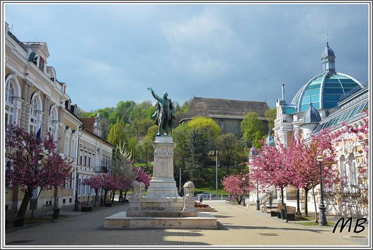 Foto: Mátyási Béla Miskolc. Hungary