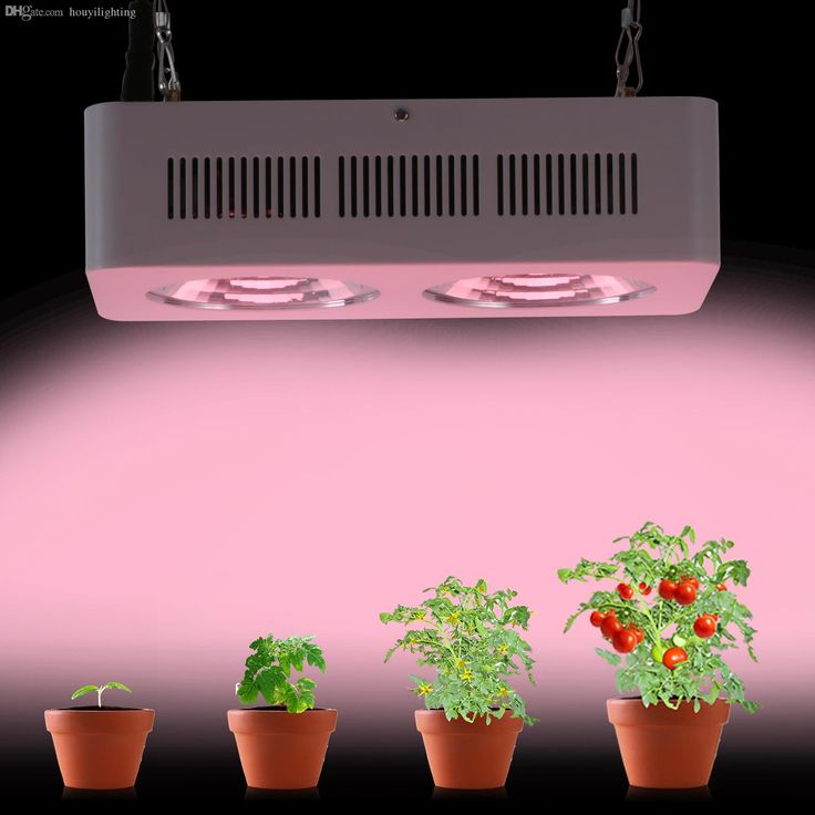 New Arrival Led Grow Light Cob 400w Full Spectrum for Greenhouse Tent Indoor Veg Plant Growing & Flowing Online with $119/Piece on Houyilighting's Store http://www.dhgate.com/product/top-selling-30w-led-flood-light-super-bright/249901003.html#s1-0-1b;searl|3080382272 DHgate.com