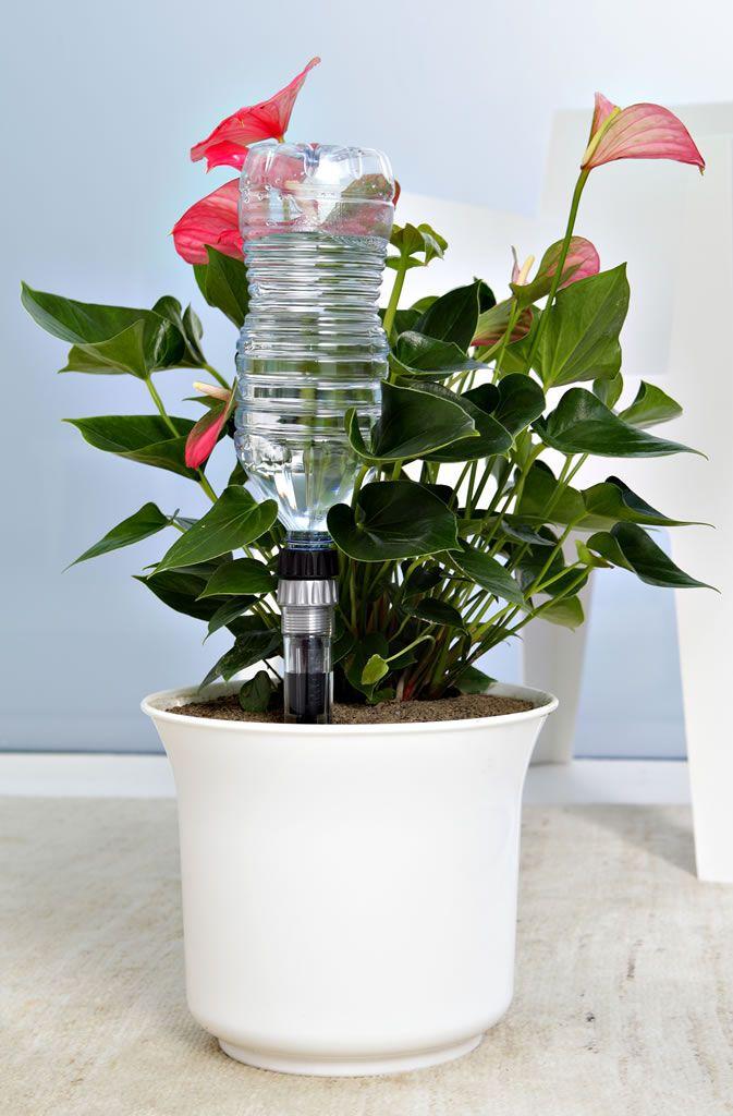 IDRIS Un esclusivo irrigatore che utilizza tutte le normali bottiglie in plastica, oppure l'apposito contenitore d'acqua dal design coordinato, per annaffiare automaticamente le piante in vaso: per giorni e giorni, senza elettricità, con la massima precisione e costanza nel tempo. IDRIS® è dotato di 4 diversi gocciolatori, per scegliere la portata più adatta ad ogni esigenza, e di treppiede regolabile che garantisce una perfetta stabilità. http://www.claber.it/cod/8055/Idris/Idris