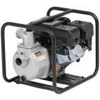 6 HP 2 in. Dewatering Pump