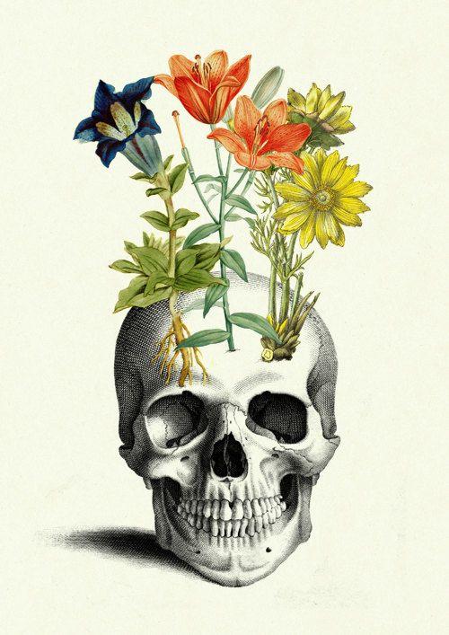 Flowers grow on human Skull Anatomy Botany by emporiumshop