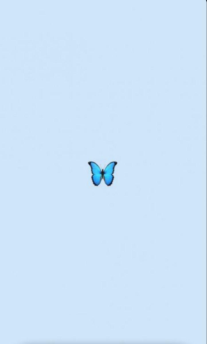Butterfly Blue Emoji Cute Vsco Wallpaper Iphonewallpaper Lockscreen Locksc Blue Butterfly Wallpaper Wallpaper Iphone Summer Butterfly Wallpaper Iphone
