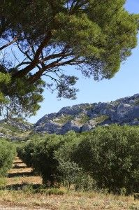In the warmer climate, you can take a hike to the Pyrenees, a mountain in the South of France. Activities like rock climbing or potholing are great ways to enjoy. Once the winter season comes, you can also try winter sporting activities. - See more at: http://holidaybays.com/explore-the-beauty-of-south-of-france-3-tips-to-get-the-most-out-of-your-trip-in-the-coastline/#sthash.OZtoDRUa.dpuf