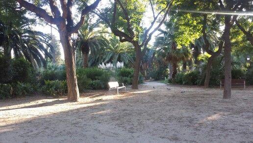 Park, Barcelona, Spain.