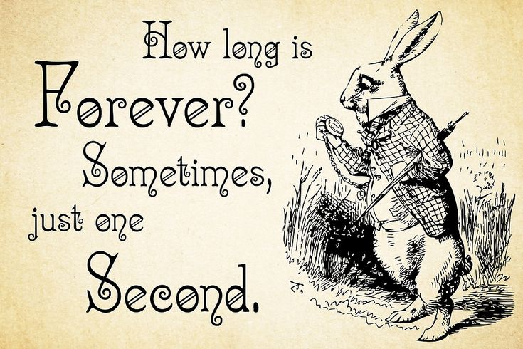 quotes alice in wonderland - Google zoeken