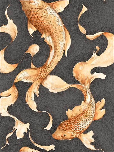 Black and Gold Koi Wallpaper